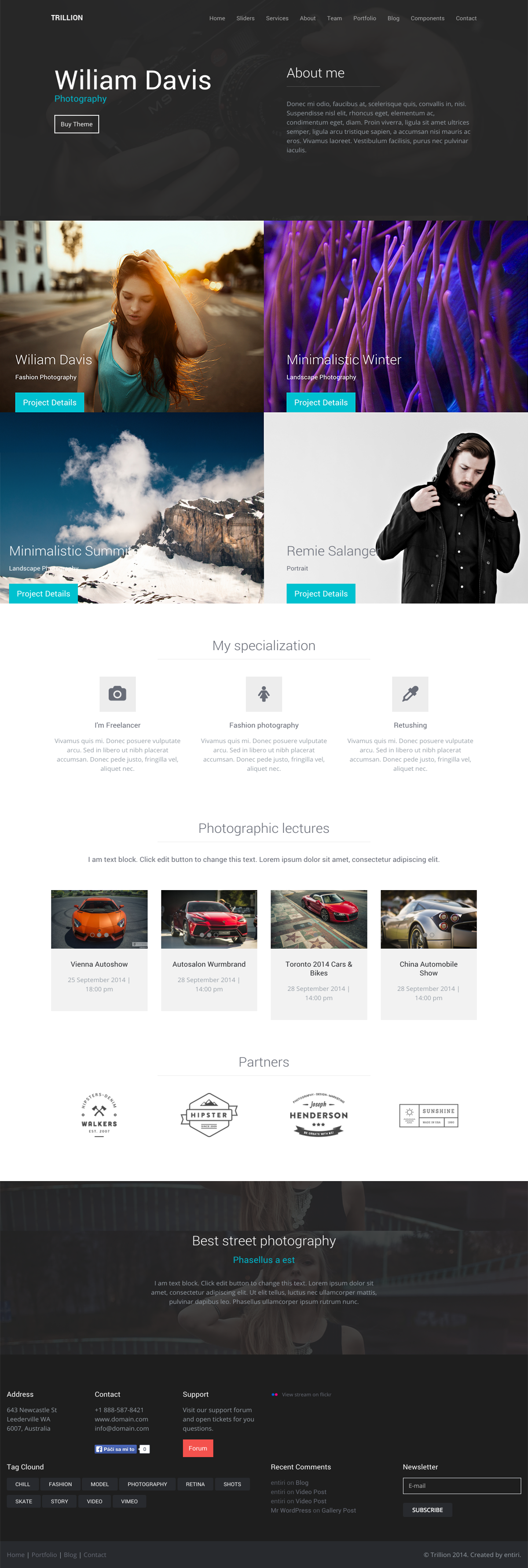 Trillion Thematic WordPress Theme copy
