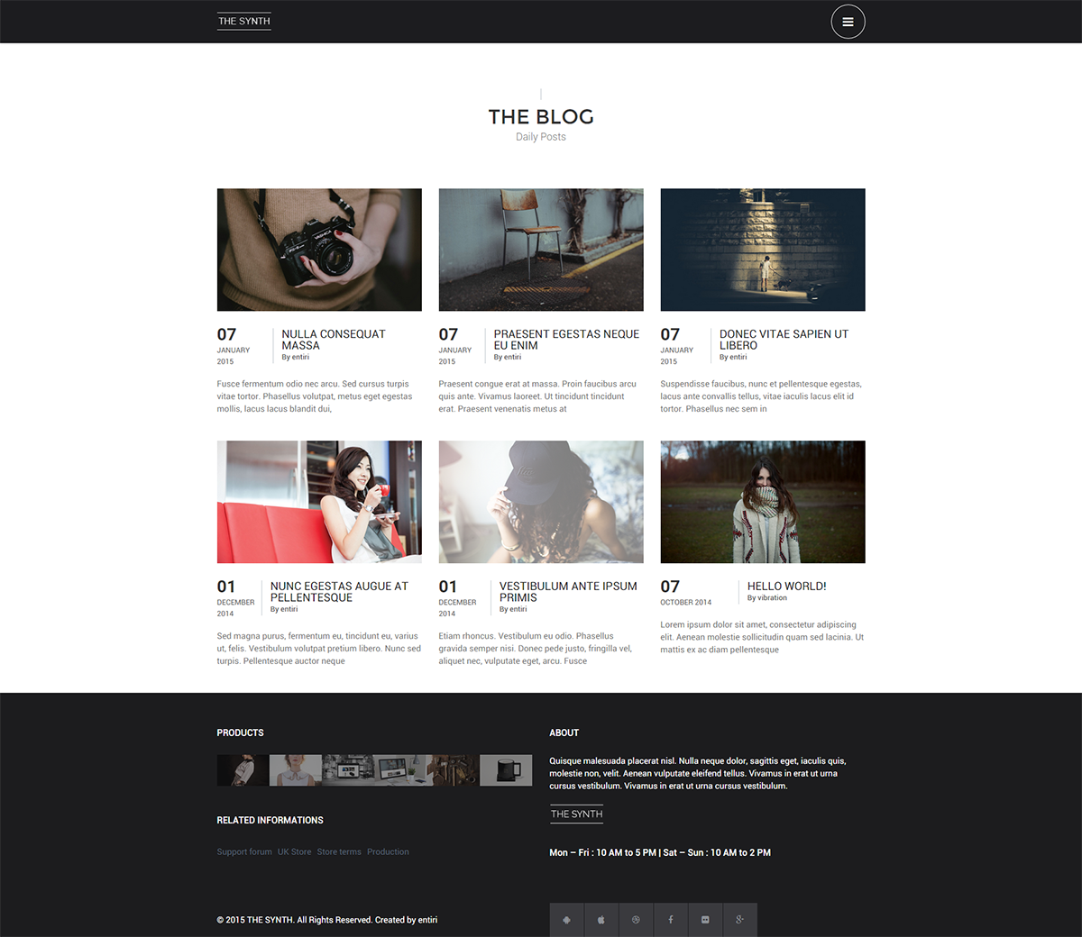 Blog Synth Premium E shop Theme