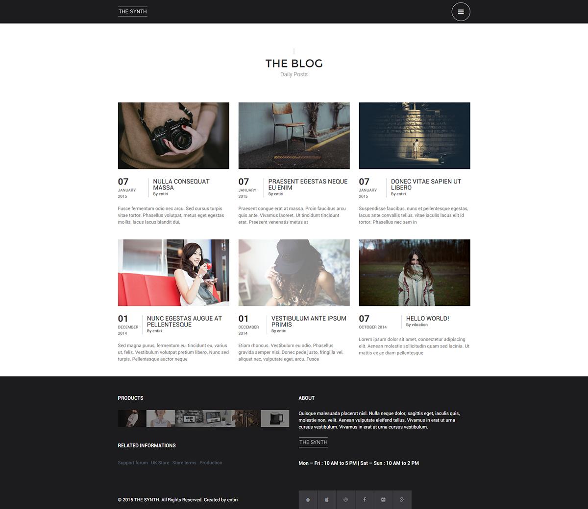 Blog Synth Premium E shop Theme
